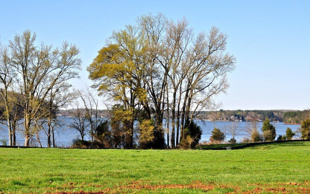 McLean Shoreline on Lake Wylie