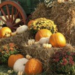 fall events in belmont nc