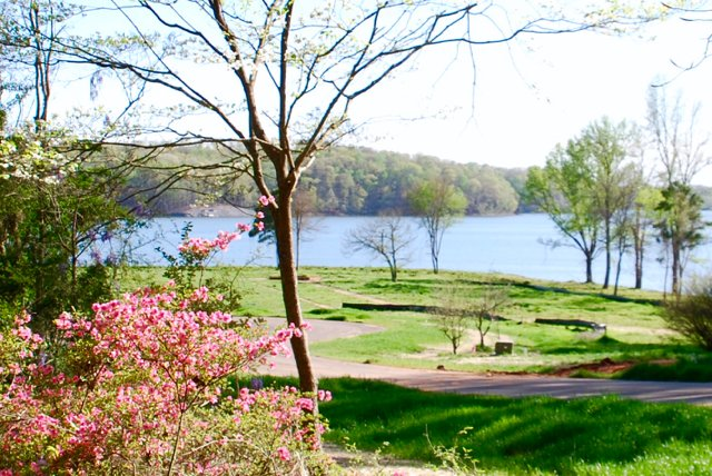 Lake Wylie waterfront lots for sale with 5 miles of shoreline at McLean