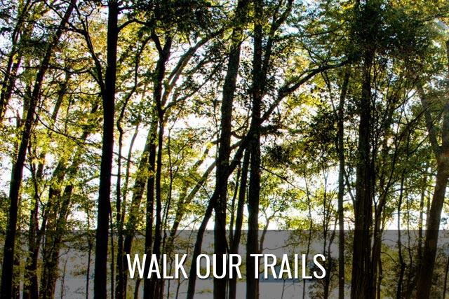 Walk Our Trails