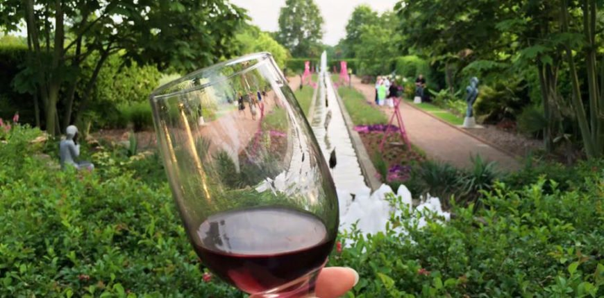 6 reasons (besides beautiful flowers) to visit Daniel Stowe Botanical Garden now!