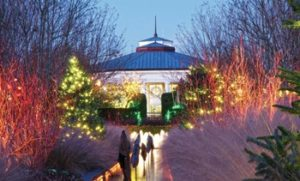 Holidays at DSBG