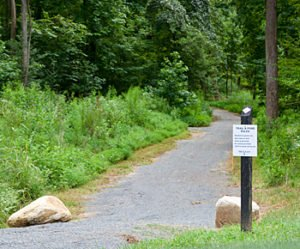 Trail at McLean