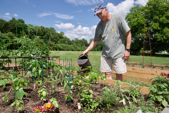 Gardener at McLean Community Garden