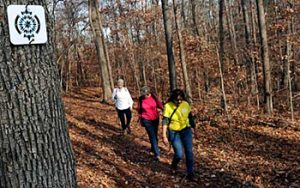 Hikers on the Seven Oaks Trail