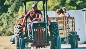 Hay ride at McLean Fall Fest 2019